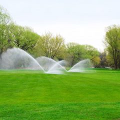 Bring Your Dream Lawn to Life with Lawn Care Companies in New Canaan, CT