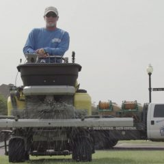 The different approaches to weed control