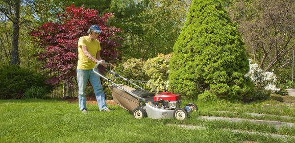 The Importance of Getting Pest Control For Boulder Residential Lawns